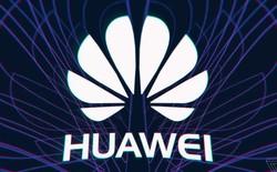Sốc: Tòa án Mỹ cáo buộc Huawei tội lừa đảo và ăn trộm các bí mật thương mại, chuẩn bị dẫn độ CFO