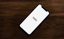 Apple Q1/2019: Doanh thu từ iPhone giảm 15% trong khi các mảng kinh doanh khác đều tăng trưởng