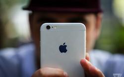 Trong khi Apple vừa phải thừa nhận nhu cầu iPhone suy yếu, Google đã nhận ra nó từ lâu