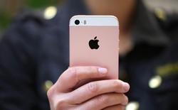 7 nguyên nhân làm mọi người giữ iPhone cũ lâu hơn