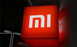 Mua 65 triệu cổ phiếu, Xiaomi chính thức đầu tư vào TCL
