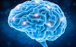 """Đột phá mới: Trí tuệ nhân tạo biến tín hiệu não thành giọng nói, giúp người khiếm thanh """"nói"""" được"""