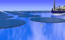 """Lại thêm công nghệ 3-trong-1 mới: """"đảo năng lượng Mặt Trời"""" sẽ vừa hút CO2 trong nước biển, vừa tạo ra methanol để làm nhiên liệu"""