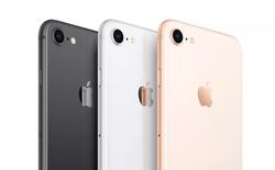 Không phải iPhone 11 Pro hay iPhone 2020, mà iPhone SE 2 mới khiến nhà Android phải lo lắng