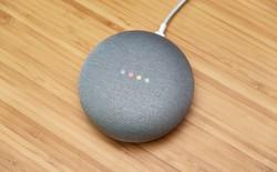 Spotify tặng mỗi thành viên Premium một chiếc loa Google Home Mini