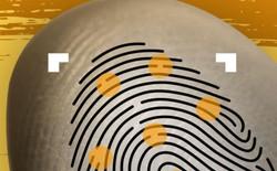 Hacker Trung Quốc dùng vân tay trên cốc thủy tinh để bẻ khóa cảm biến siêu âm, điện dung lẫn quang học trong 20 phút