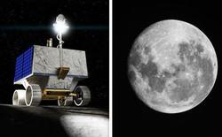 NASA lên kế hoạch gửi robot lên cực nam của Mặt Trăng để tìm kiếm nước