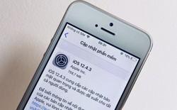 Tung ra iOS 12.4.3 cho iPhone 5s và iPhone 6, Apple vẫn chưa bỏ rơi thiết bị đời cũ