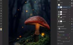 Adobe hứng chịu review tiêu cực từ những người dùng Photoshop iPad
