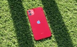 Nhà đầu tư buồn lòng vì giá iPhone đang ngày càng rẻ hơn