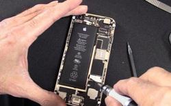 Apple không cho người dùng tự sửa chữa iPhone, vì sợ họ có thể tự làm hại bản thân