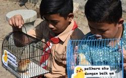 Học sinh Indonesia phải nuôi gà để… cai nghiện smartphone