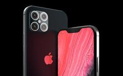 IPhone 12 và 5G có thể tạo ra một 'siêu chu kỳ bán hàng khổng lồ' cho Apple