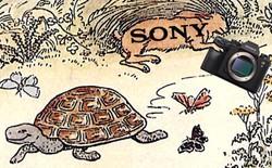 Sony đang trễ nải trong chính cuộc đua công nghệ nhiếp ảnh mà họ tạo ra?