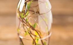 Nghịch lý: Muốn cứu lấy môi trường chúng ta lại phải làm ra nhựa không phân hủy?