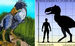 Loài người thật may mắn vì những loài chim ăn thịt khổng lồ này đã tuyệt chủng