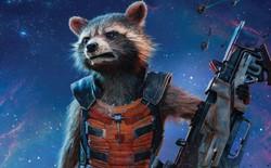 Gấu mèo Oreo, hình mẫu của nhân vật Rocket trong Guardians of the Galaxy vừa bị chết