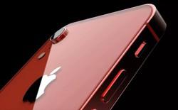 """Xem video concept iPhone SE 2 với tai thỏ và thiết kế """"full glass"""""""