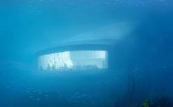 Bên trong nhà hàng dưới nước lớn nhất thế giới, nơi thực khách ngắm sinh vật biển đang bơi trong khi thưởng thức hải sản