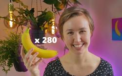 Được hỏi 'quả chuối có bao nhiêu mặt?' - Nhà khoa học mua một phát 280 quả để tìm câu trả lời