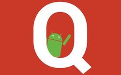 Android Q có thể sẽ loại bỏ nốt cả nút Back