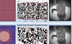 Sử dụng AI, các nhà khoa học có thể mô phỏng cách nhìn của người chỉ với 1 điểm ảnh