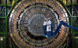 Chuyện gì xảy ra với nhà khoa học từng chui đầu vào máy gia tốc hạt?