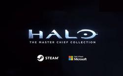 Từ chỗ bỏ mặc Windows để phát hành game độc quyền cho Xbox, vì sao Microsoft nay lại mang đầy đủ bộ sưu tập Halo lên Steam?