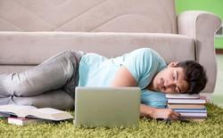 Bạn muốn lấy lại hiệu suất làm việc vào buổi chiều? Hãy ngủ trưa sao cho khoa học