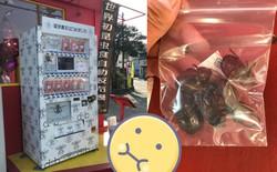 Ăn thử bọ lực sĩ rang muối trong máy bán côn trùng ở Nhật và cái kết sạn mồm