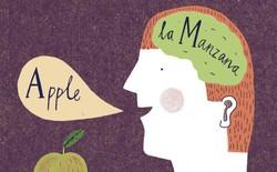 Giả thuyết: Liệu biết nhiều thứ tiếng có khiến bạn trở thành người đa nhân cách?