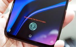 Hình ảnh macro của màn hình OLED cho thấy vì sao cảm biến vân tay quang học thua rất xa cảm biến siêu âm