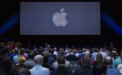 Đà tăng trưởng của Apple trớ trêu thay, lại đang phụ thuộc vào Android