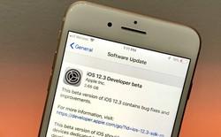 Apple tung ra bản beta đầu tiên của iOS 12.3 với ứng dụng TV mới