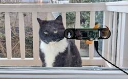 Kỹ sư chế tạo hệ thống nhận diện mặt mèo bằng Raspberry Pi, giá chỉ hơn 1 triệu đồng