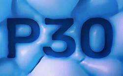 """Huawei tung teaser """"nhá hàng"""" P30: 4 camera, có khả năng zoom 10x, hệ thống loa được nâng cấp"""
