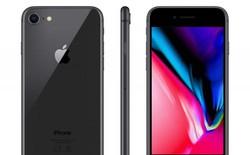 """iPhone 8 sẽ có bản nâng cấp vào năm sau với chip A13, camera đơn, giá """"tầm trung"""""""