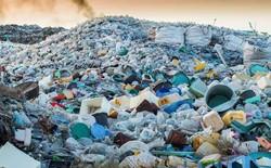 Chuyện gì sẽ xảy ra với một chai nhựa sau khi bị vứt vào thùng rác? Hóa ra vứt rác đúng chỗ thôi là chưa đủ