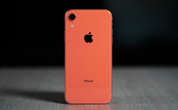 Apple giảm giá gần 6 triệu đồng cho iPhone XR tại Ấn Độ để cạnh tranh với Galaxy S10e