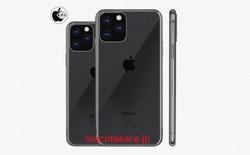 iPhone 2019 bản 3 camera sẽ có màn hình OLED 6.1-inch và 6.5-inch, khung sườn dày hơn XS