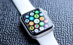 Apple Watch Series 4 giành giải thiết bị có màn hình tốt nhất năm 2019