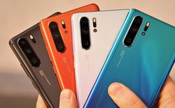 Báo cáo: Huawei giảm sản lượng P30/P30 Pro, dòng Mate 30 sắp ra mắt cũng bị cắt giảm đơn hàng