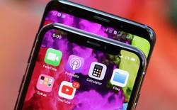 Samsung yêu cầu Apple nộp phạt vì không mua đủ tấm nền OLED như cam kết