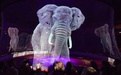 Người Đức rủ nhau đi xem xiếc thú Hologram để phản đối bạo hành động vật