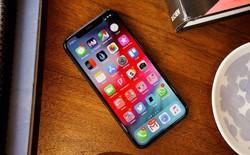 Apple cuối cùng sẽ ra mắt một chiếc iPhone giá rẻ, đủ hấp dẫn để mọi người đều có thể mua được?