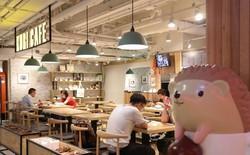 Việt Nam có cà phê chó mèo, Hong Kong chơi lớn mở hẳn cafe nhím