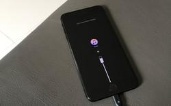 iMyFone Fixppo, giải pháp khắc phục triệt để các lỗi cơ bản về Recovery cho iPhone
