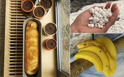 20 khoảnh khắc vạn vật biến thành đồ ăn khiến những kẻ đói bụng phải cồn cào
