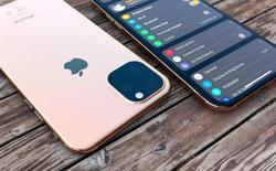 Đến Apple cũng không tin iPhone 11 sẽ bán chạy hơn năm ngoái