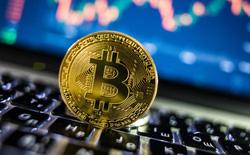 Ông chú người Mỹ đối mặt với 5 năm tù giam vì bán số Bitcoin trị giá 2 triệu USD trên mạng